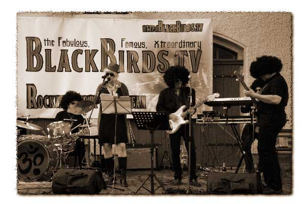 The famous, xtraordinary blackbirds.tv (Live, 2008)