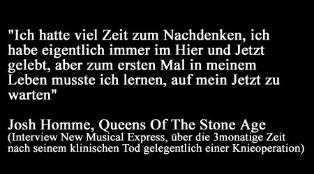 Josh Homme (Queens Of The Stone Age) - Hier  & Jetzt