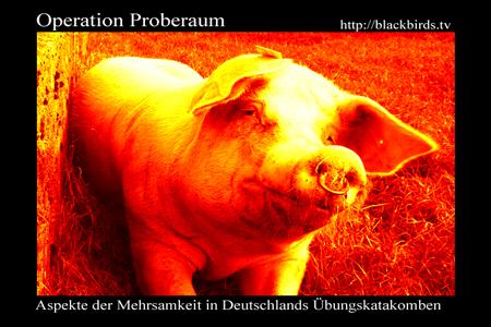 Banner Operation Proberaum