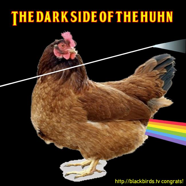 Dark Side Of The Huhn