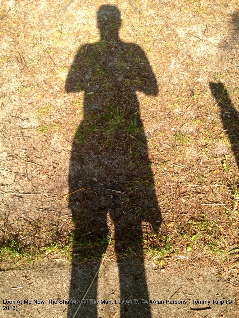 Look At Me Now, The Shadow Of The Man, I Used To Be #Alan Parsons