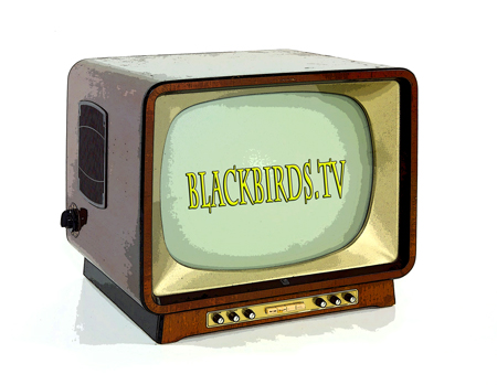 _blackbirds.tv_Media