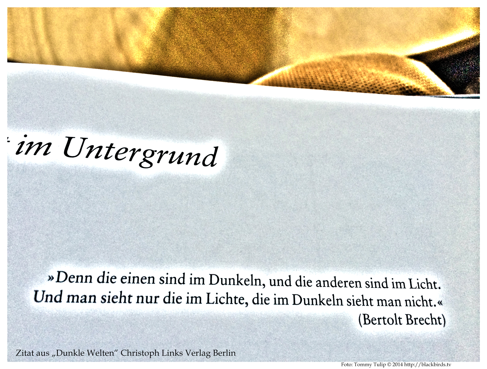 IMG_1478_Bert.Brecht.Zitat