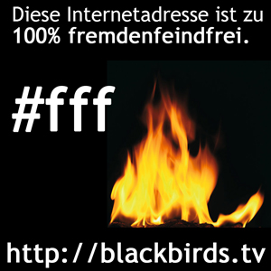 fff_Banner_blackbirds.tv_300Pixel