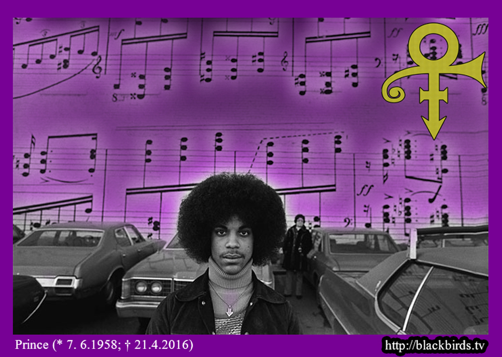 Prince - ♪♫♪ Purple Notes ♪♫♪