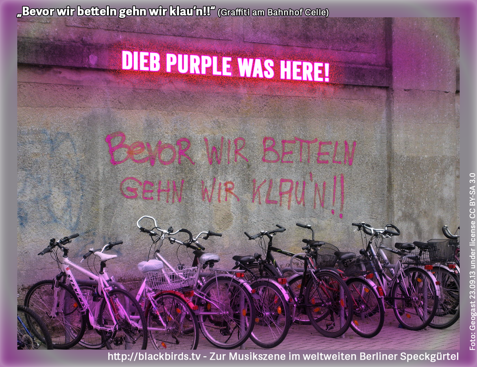 Dieb Purple was here! Bevor wir betteln gehn wir klau'n (Graffiti am Bahnhof Celle) - Rights reserved