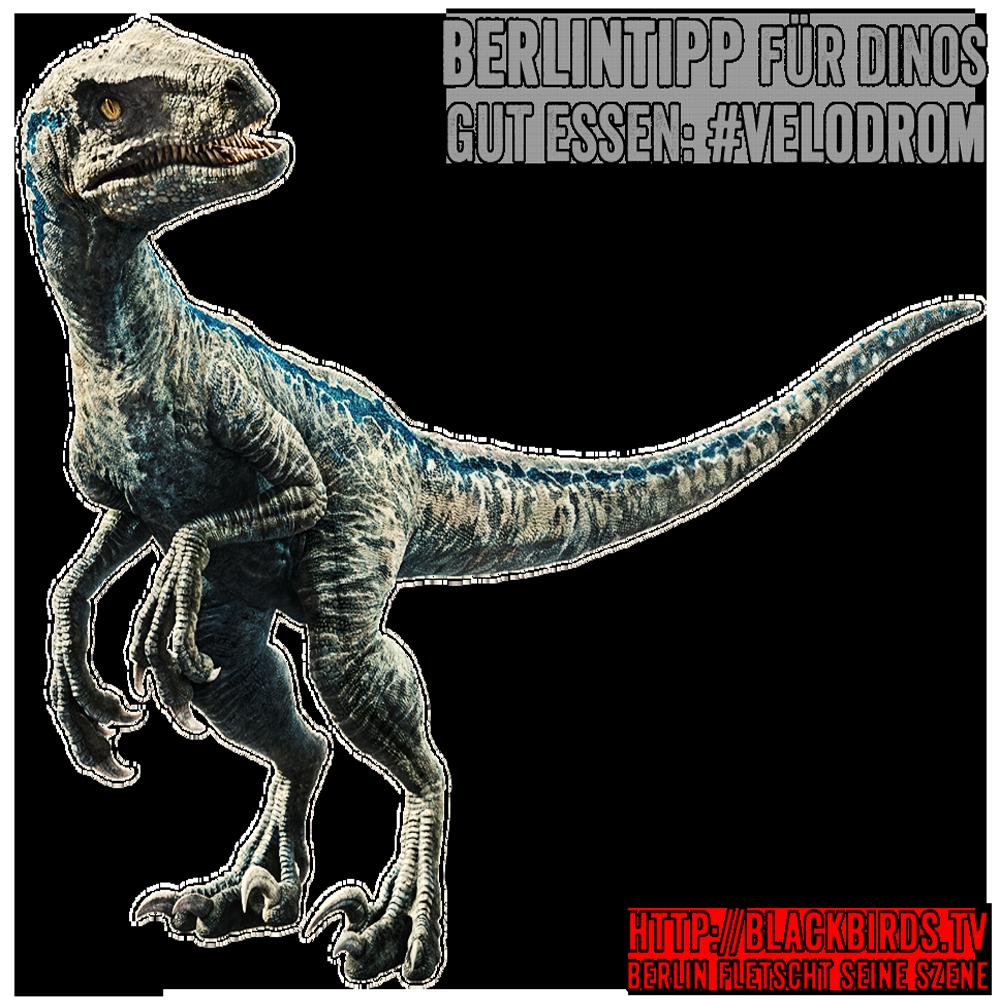 Berlintipp für Dinos - Gut essen: Velodrom #Velociraptor #Dinosaurier #Gebrauchsgrafik