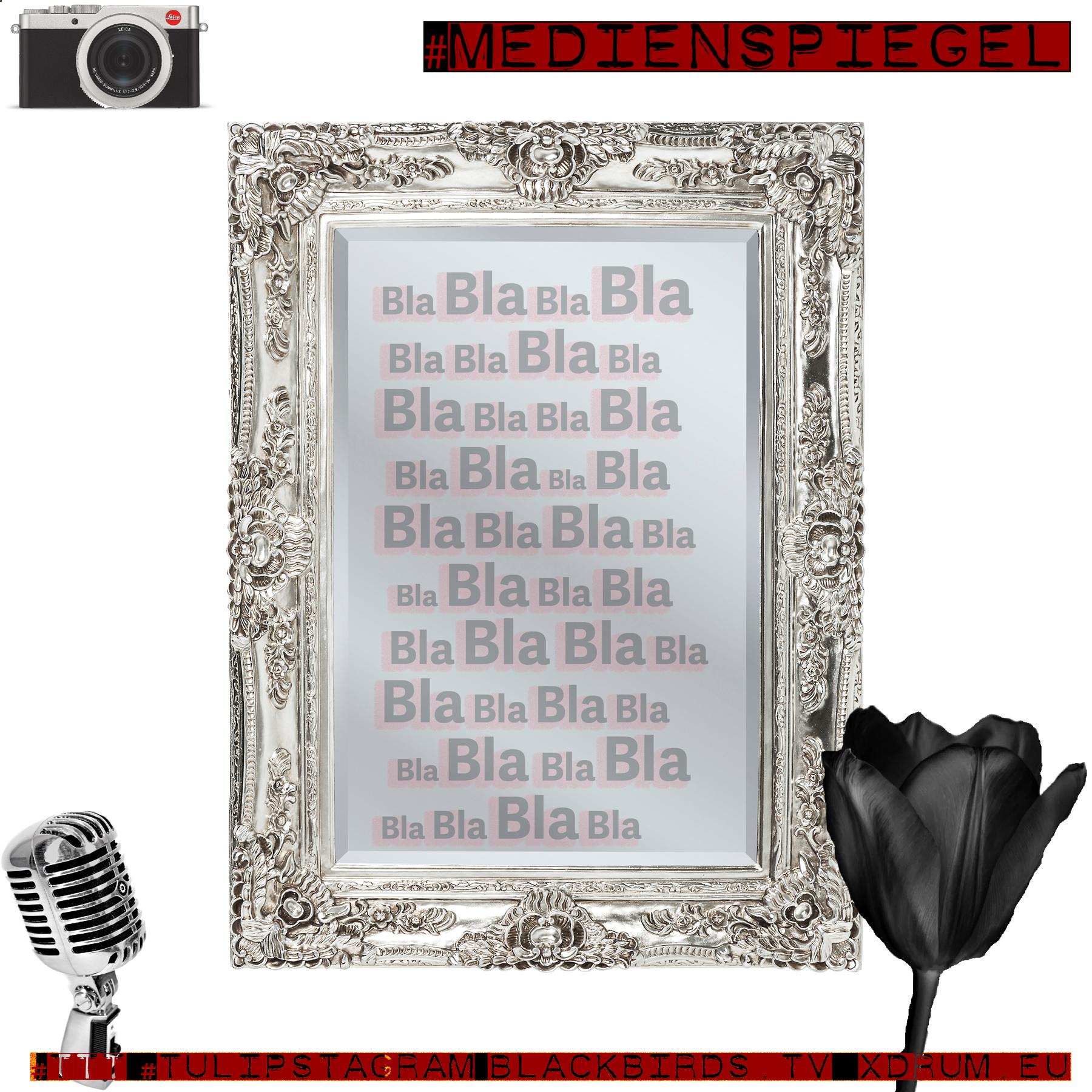 #Medienspiegel (Sinnbild) #TTT #Tulipstagram - Sites: blackbirds.tv xdrum.eu