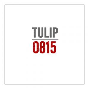 Tulip 0815 (Fakecover eines berühmten Spliffalbums namens 85555) #TTT #Tulipstagram
