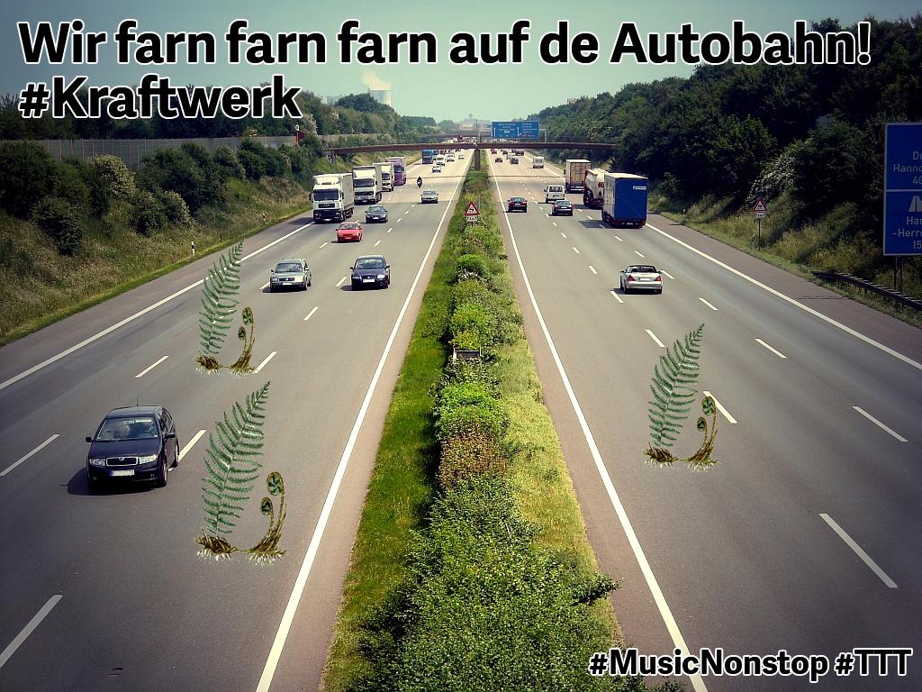 Wir farn farn farn auf der Autobahn #Kraftwerk #TTT #Tulipstagram
