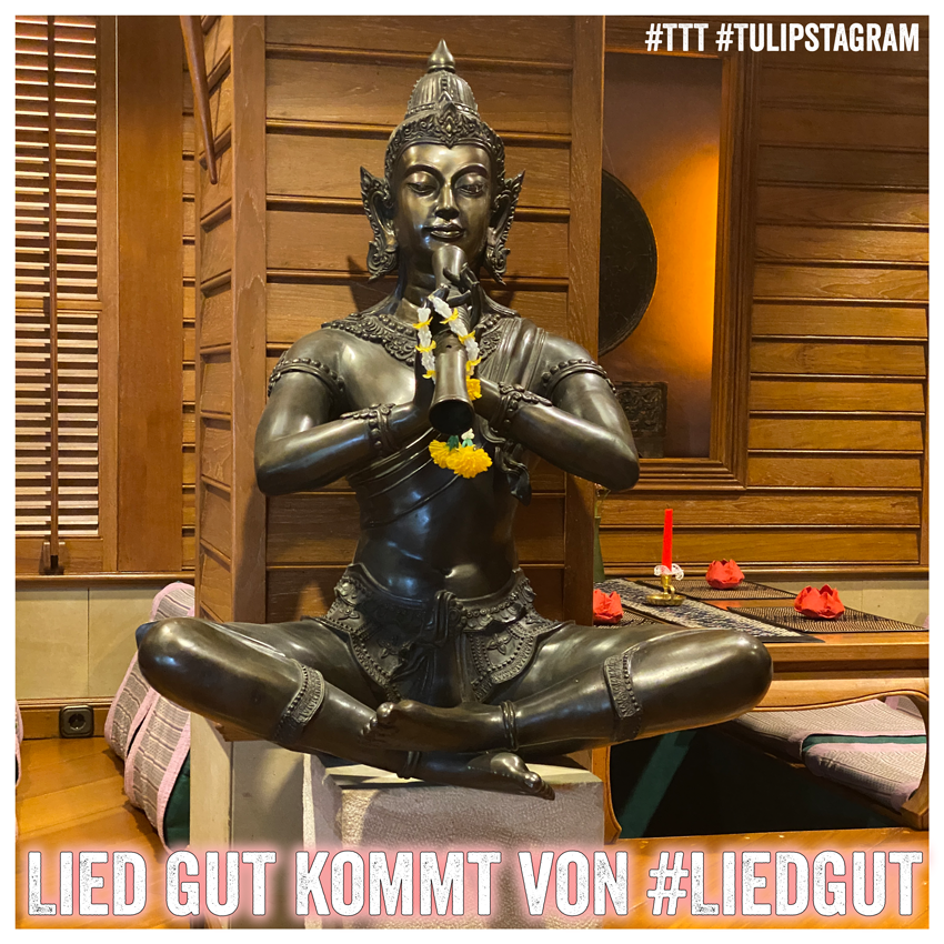 Lied gut kommt von #Liedgut #TTT #Tulipstagram (Foto: Sala Thai, Potsdam, Juni 20)